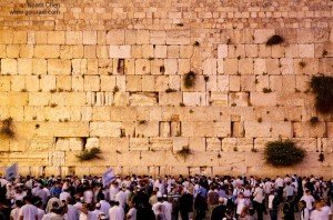 Israel private tour guide- praying in the Kotel
