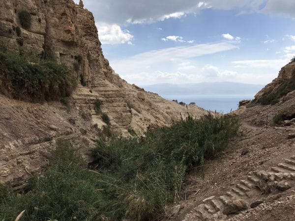 Ein gedi dead sea private tour